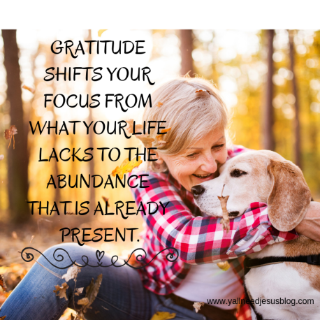GRATITUDE SHIFTS YOUR FOCUS FROM WHAT YOUR LIFE LACKS TO THE ABUNDANCE THAT IS ALREADY PRESENT.
