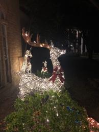 Costco Deer